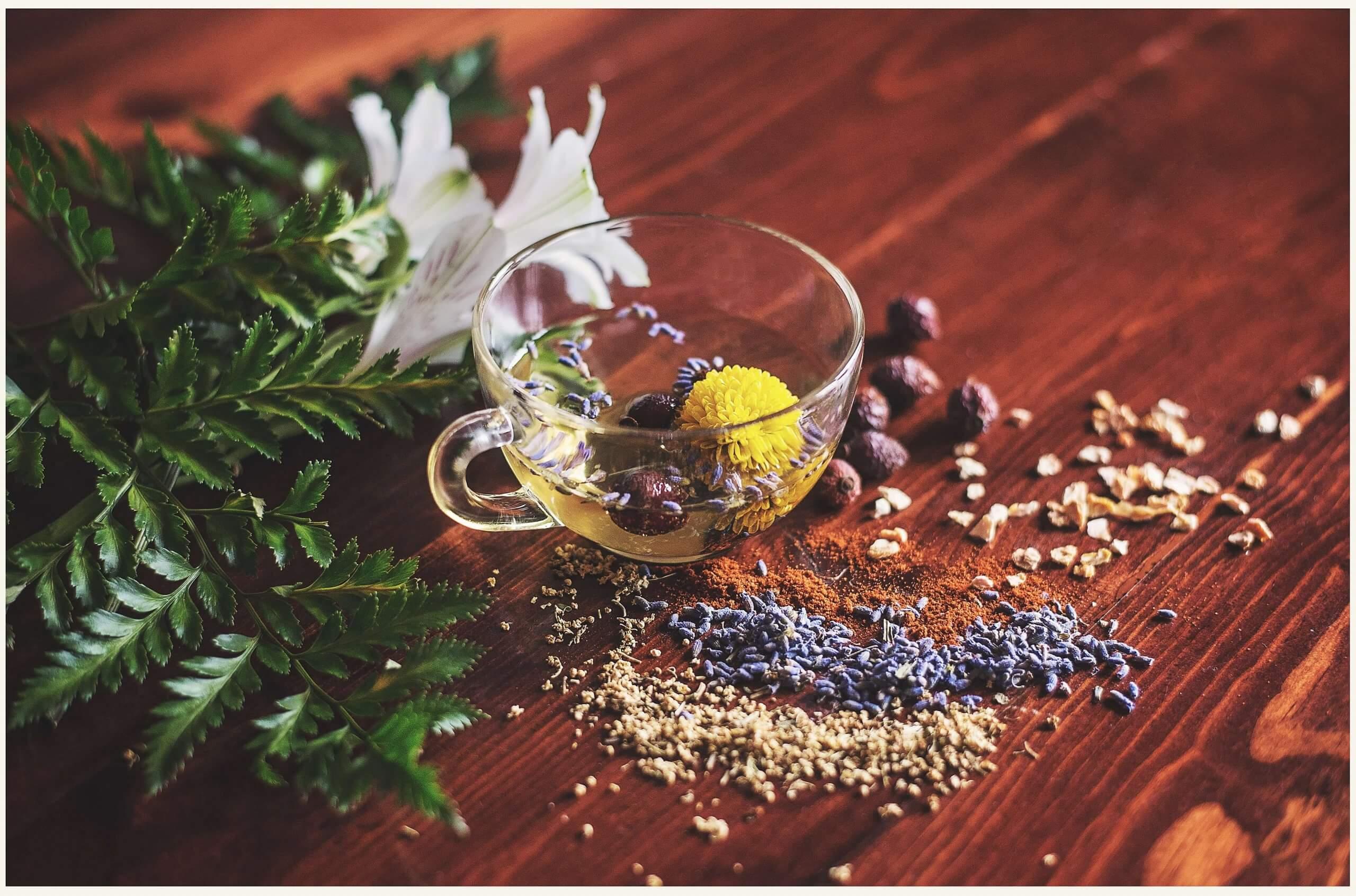 plantes adaptogènes et bienfaits
